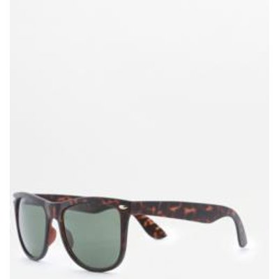 Buddy Tortoise Square Frame Sunglasses, BROWN