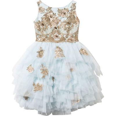 Blue and Gold Lace and Tulle Dress