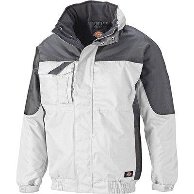 Dickies Mens Industry 300 Winter Jacket White / Grey S
