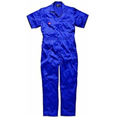 Dickies Mens Lightweight Cotton Short Sleeve Overalls Royal Blue L