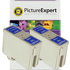 Epson T013 Compatible Black Ink Cartridge TWINPACK