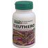 Natures Plus Herbal Actives Eleuthero 250 mg Capsules 60 Caps