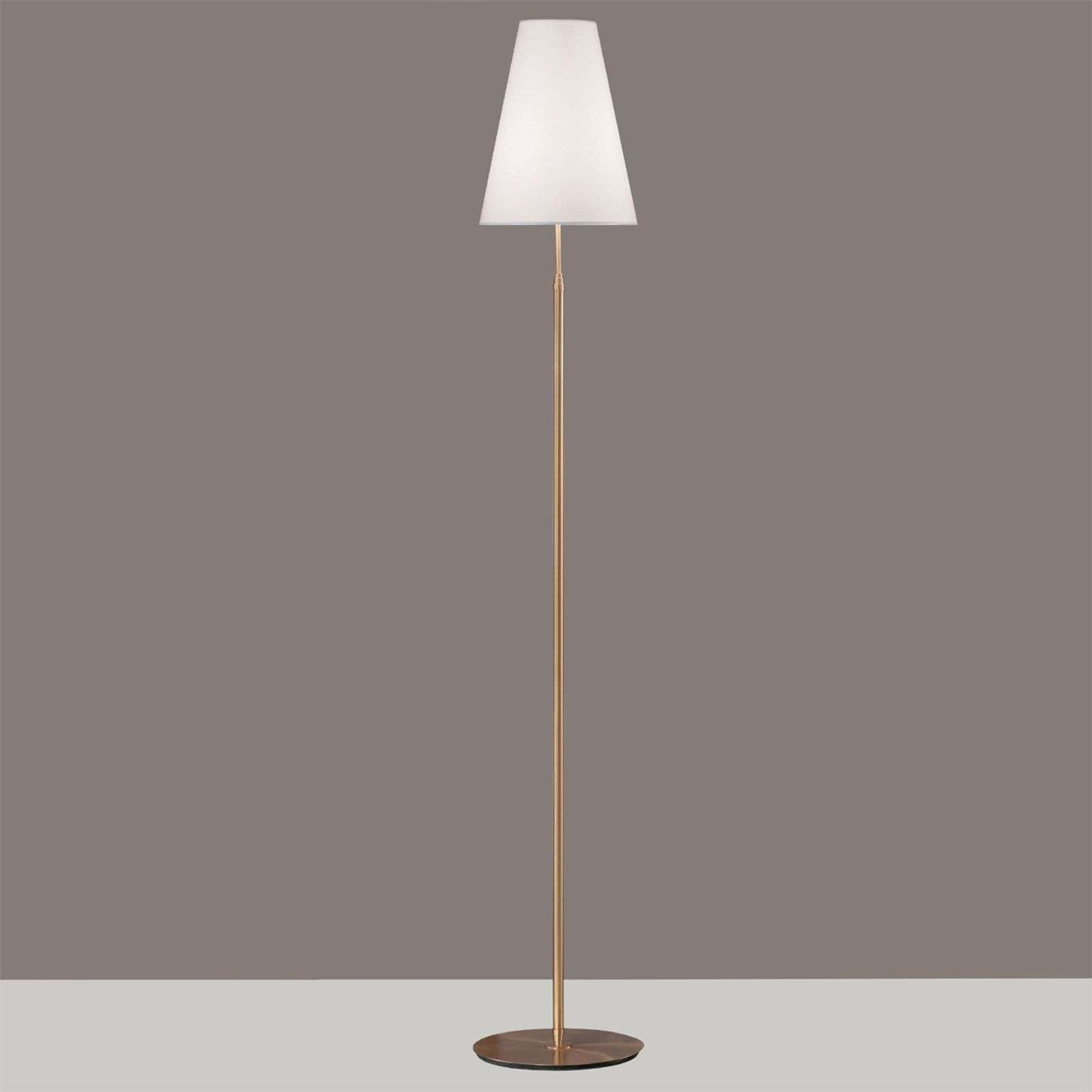 Clemo floor lamp with a gold coloured frame