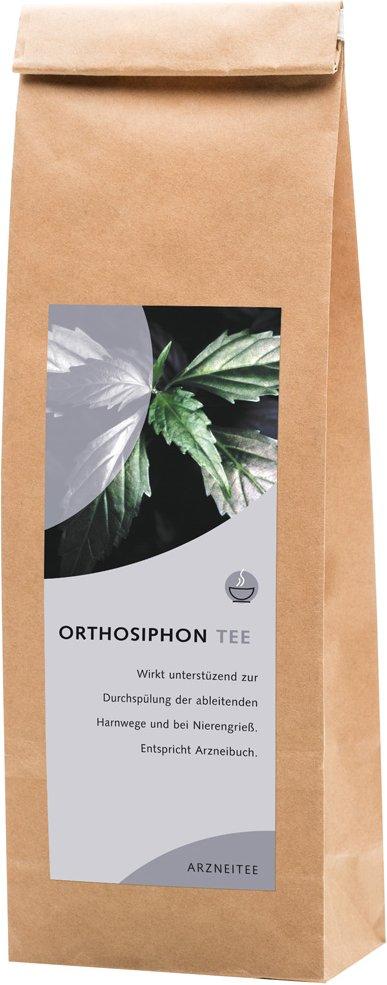 Orthosiphontee