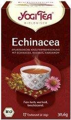 Echinacea-Tee im Beutel