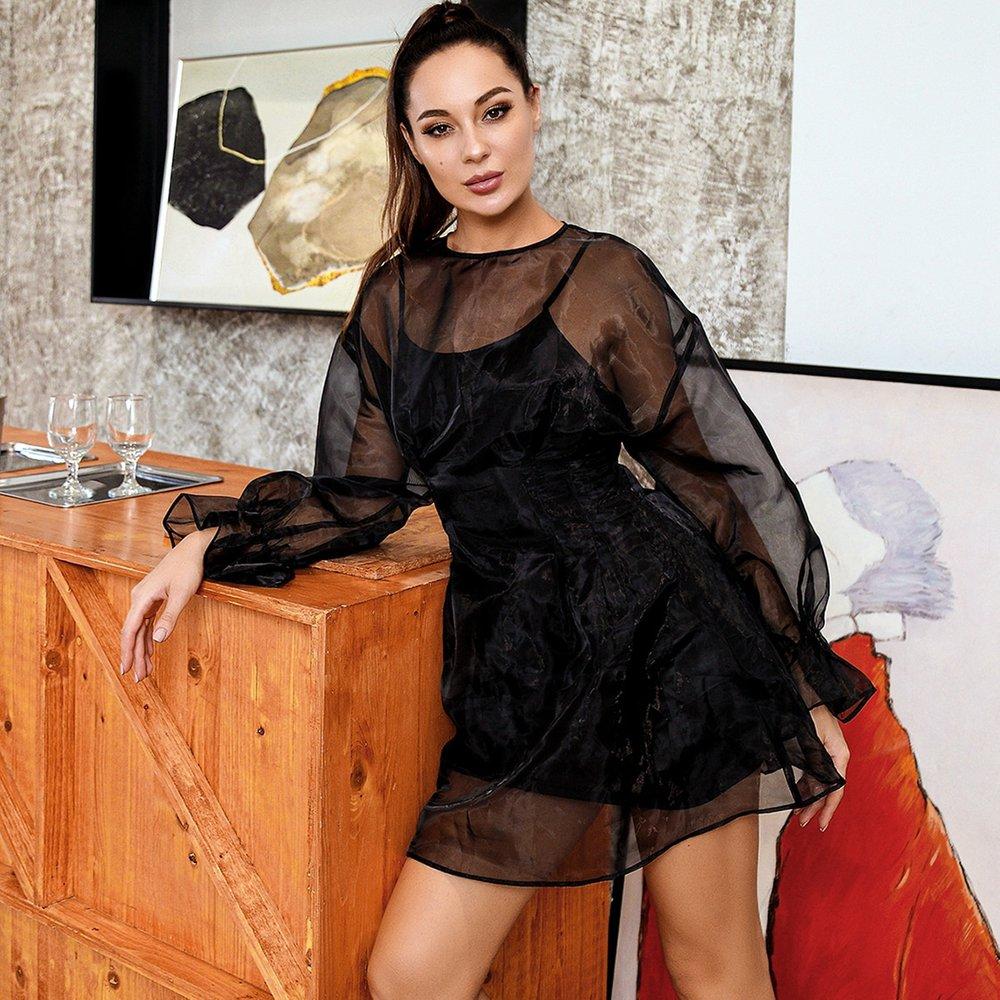 HouseOfChic Robe en organza transparente avec ruchés sans fond de robe - SHEIN - Modalova