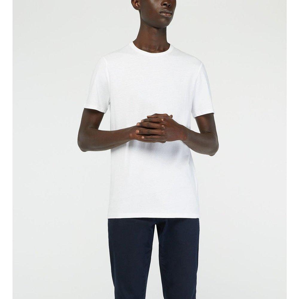 T-shirt Pishron Droit Coton Biologique - GALERIES LAFAYETTE - Modalova