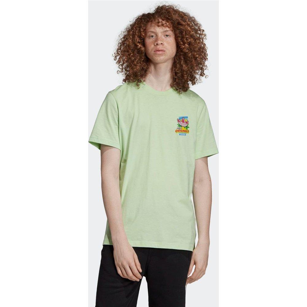T-shirt Bodega Popsicle - adidas Originals - Modalova