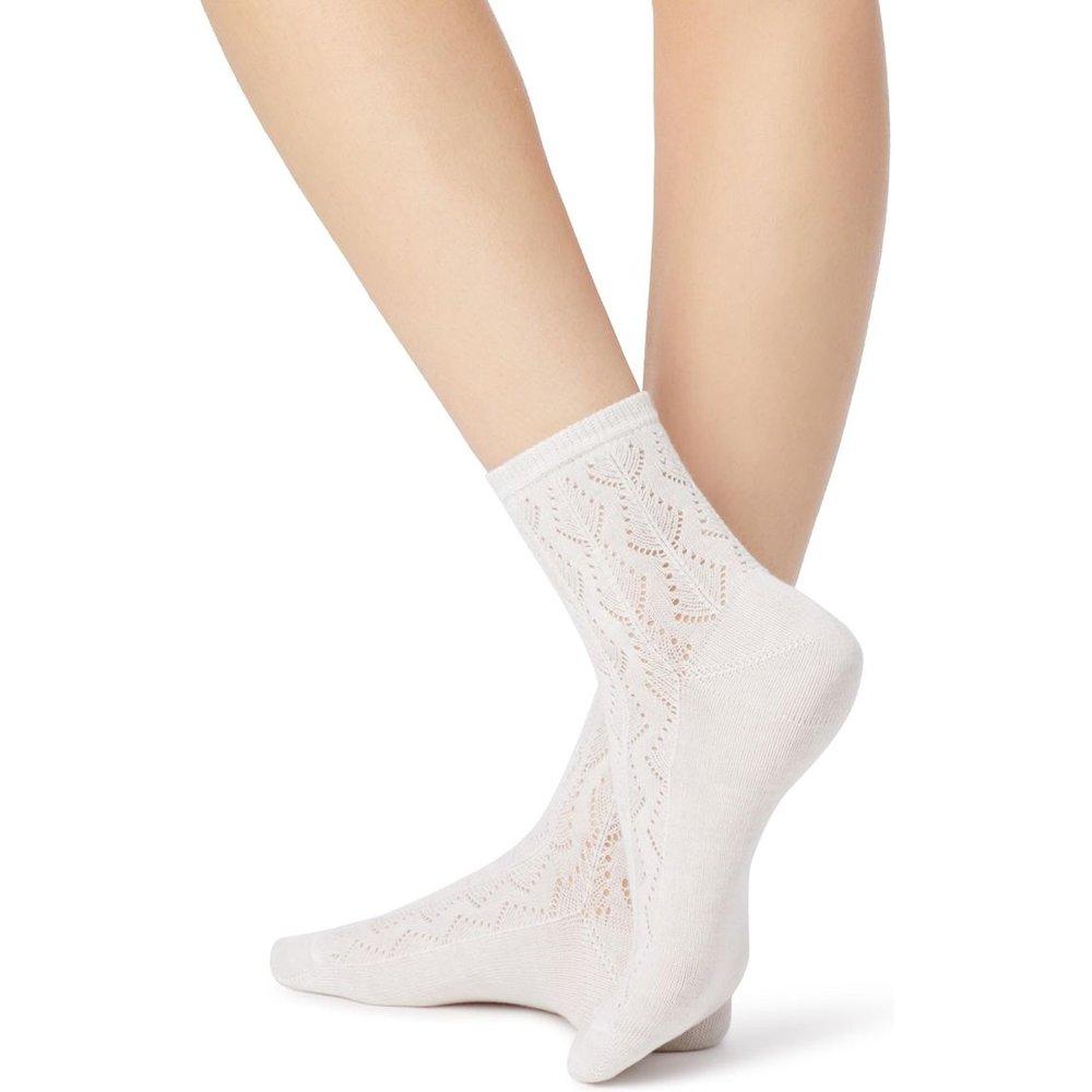 Chaussettes ajourées coton - CALZEDONIA - Modalova