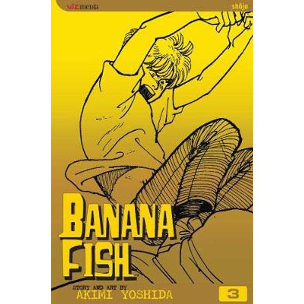 Banana Fish, Vol. 3