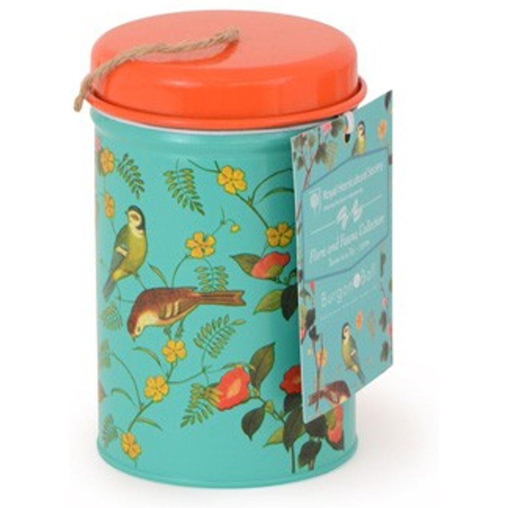 RHS Garden Twine in a Gift Tin - Flora and Fauna Design
