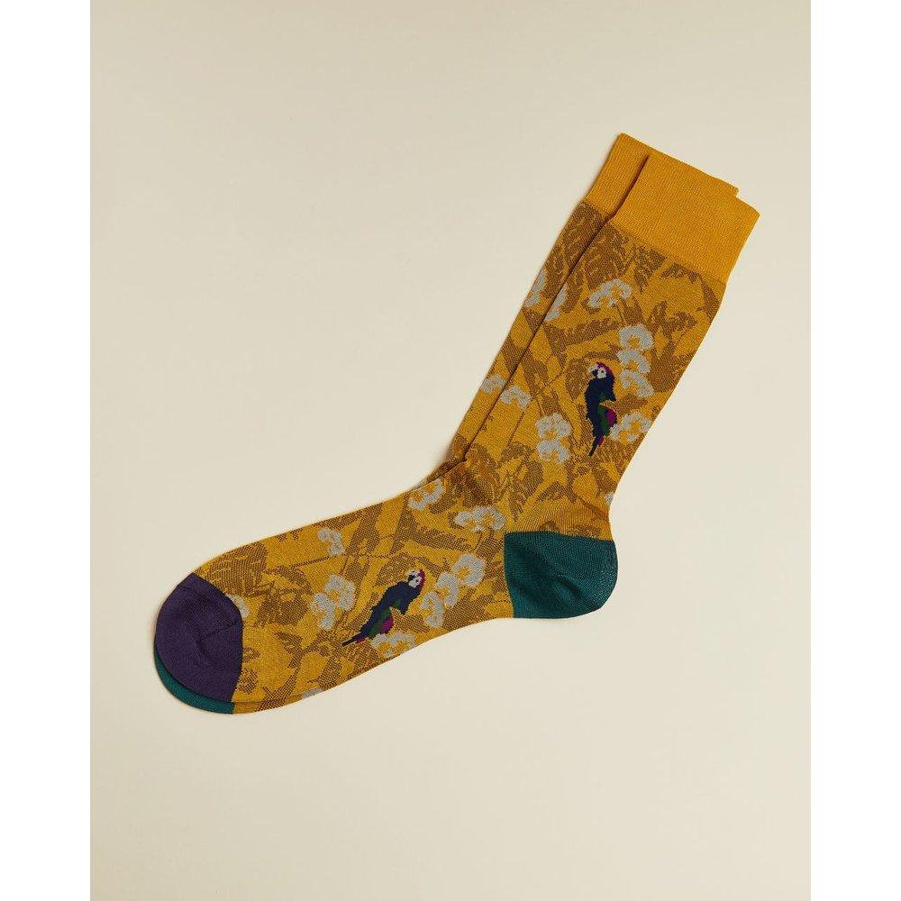 Chaussettes En Coton Imprimé Perroquets - Ted Baker - Modalova
