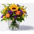 Blumen im Strauß Sonnengruß
