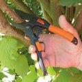Garten Primus Power-Gleitschere