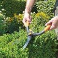 Garten Primus Buchsbaumschere, Vor- und Formschnitt