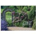 Gartenposter Rosentraum, 210 x 150 Zentimeter
