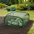 Pop-Up Frucht-Schutz-Käfig, PE-Netz, grün, 100x100x49 Zentimeter