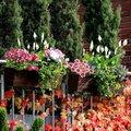 Outdoor-Rattan-Balkonkasten mit Bewässerungssystem, 19x60x19 Zentimeter, kaffee braun