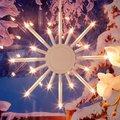 Leuchtstern Winterpracht