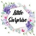 Little Surprise