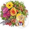 Provence und Glückwunsch-Teddy