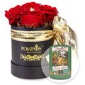 Große Rosen-Box by Harald Glööckler und POMPÖÖS Kaffee
