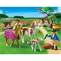 Playmobil Paddock With Horses and Pony 5227