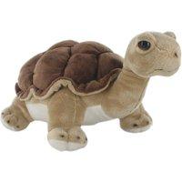 Hamleys Land Turtle - Turtle Gifts