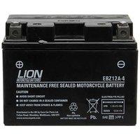 Motor Cycle Battery (YTZ12S)