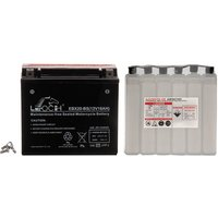 Motorcycle Battery (Ltx20-Bs)