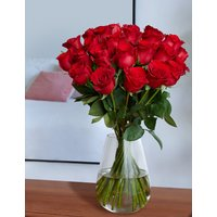 The Collection Two Dozen Freedom Valentine's Roses