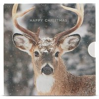 Christmas Stag Gift Card