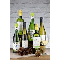 Next 6 Bottles World Sauvignon Blanc White Wine Mixed Case - White