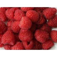 Herbst-Himbeere Primeberry ® 'Autumn Happy' ®, 40-60 cm, Rubus idaeus Primeberry ® 'Autumn Happy' ®, Containerware
