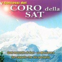 Bergführerchor Dolomiten - I Successi di Coro Della Sat