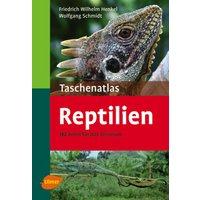 Taschenatlas Reptilien: 182 Arten für das Terrarium - Friedrich W. Henkel