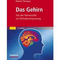 Das Gehirn: Von der Nervenzelle zur Verhaltenssteuerung - Richard F. Thompson