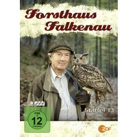 Forsthaus Falkenau - Staffel 13 (Jumbo Amaray - 3 DVDs)