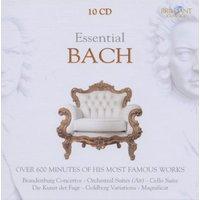 Jaap Linden Ter - Bach: Meisterwerke/Essential