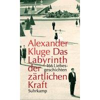 Das Labyrinth der zärtlichen Kraft: 166 Liebesgeschichten. Mit einer DVD - Alexander Kluge