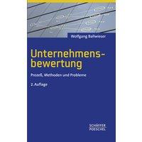 Unternehmensbewertung: Prozeß, Methoden und Probleme - Wolfgang Ballwieser