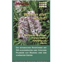 Madeira - Was hier alles wächst!: Die Flora am Wegesrand: Blumen, Kräuter, Kulturpflanzen, Bäume