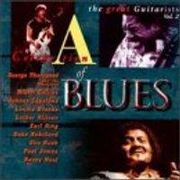 V - Great Blues Guitarists V.2