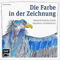 Die Farbe in der Zeichnung: Motive Schritt für Schritt skizzieren und kolorieren - Susanne Haun