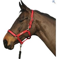 Cottage Craft Field Safe Head Collar - Size: PONY - Colour: Black