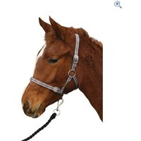 Cottage Craft Foal Collar (One Size) - Colour: Black