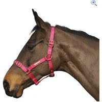 Cottage Craft Adjustable Riding Headcollar - Size: PONY - Colour: Pink