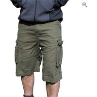 Regatta Kean Mens Shorts - Size: 30 - Colour: GRAPE LEAF