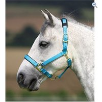 Shires Topaz Nylon Headcollar - Size: PONY - Colour: Blue