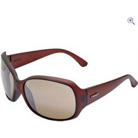 Sinner Amos Sunglasses (Brown/Brown Gradient) - Colour: Matte Brown